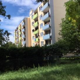 3 Zimmer-Wohnung in Kehl Sölling