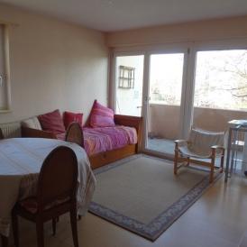 Schnuckelige 2 Zimmer DG Wohnung  mit Balkon in Kehl Goldscheuer